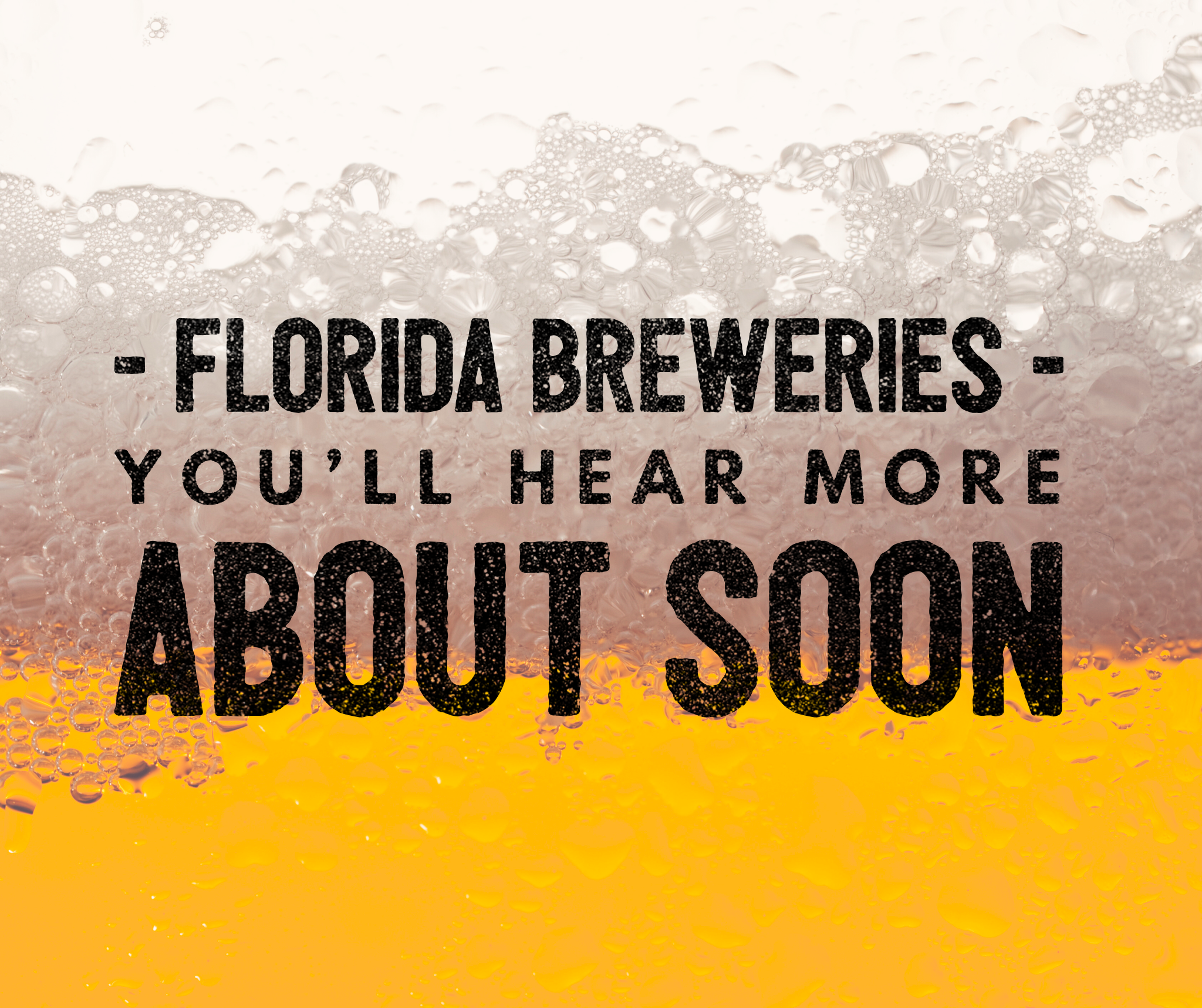 Florida Breweries headline