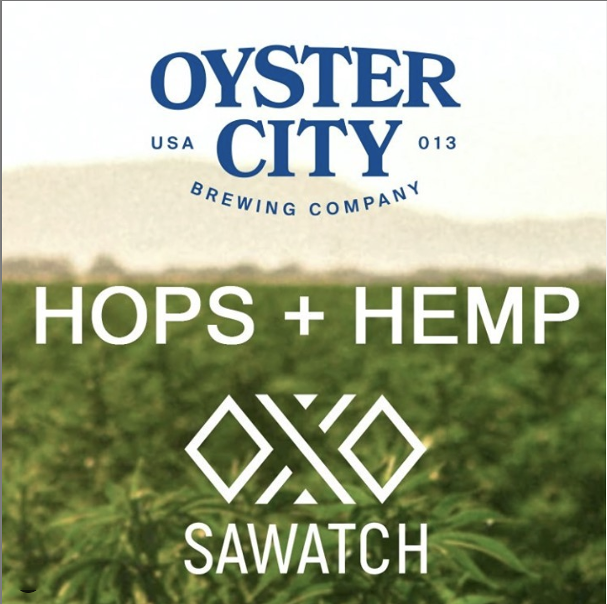 Oyster City Brewing soon to brew with CBD